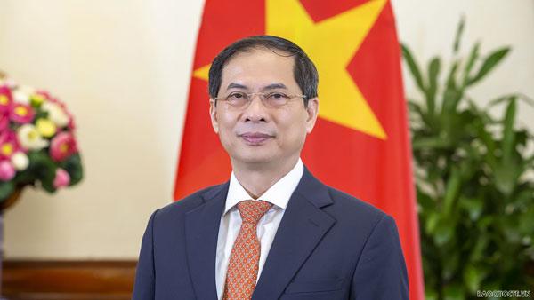 Bộ trưởng Bùi Thanh Sơn gửi thư tới các cơ quan đại diện Việt Nam trước diễn biến mới của dịch Covid-19