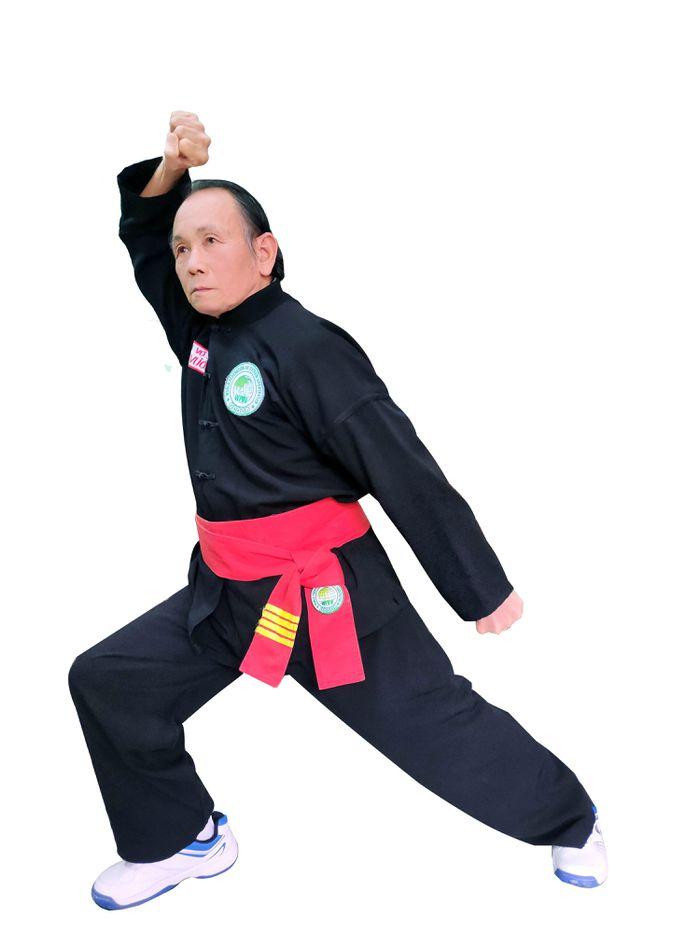 Con trâu trong võ thuật cổ truyền Việt Nam
