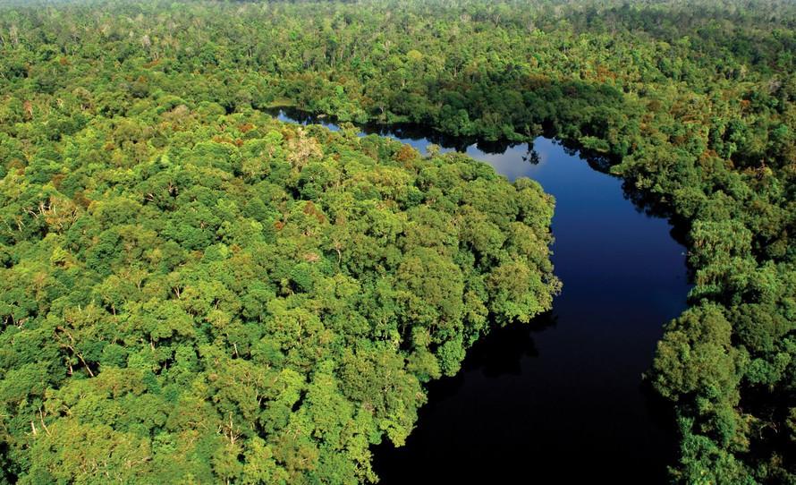 Vinh danh 6 nhà khoa học trẻ 2020 với những nghiên cứu về hệ sinh thái